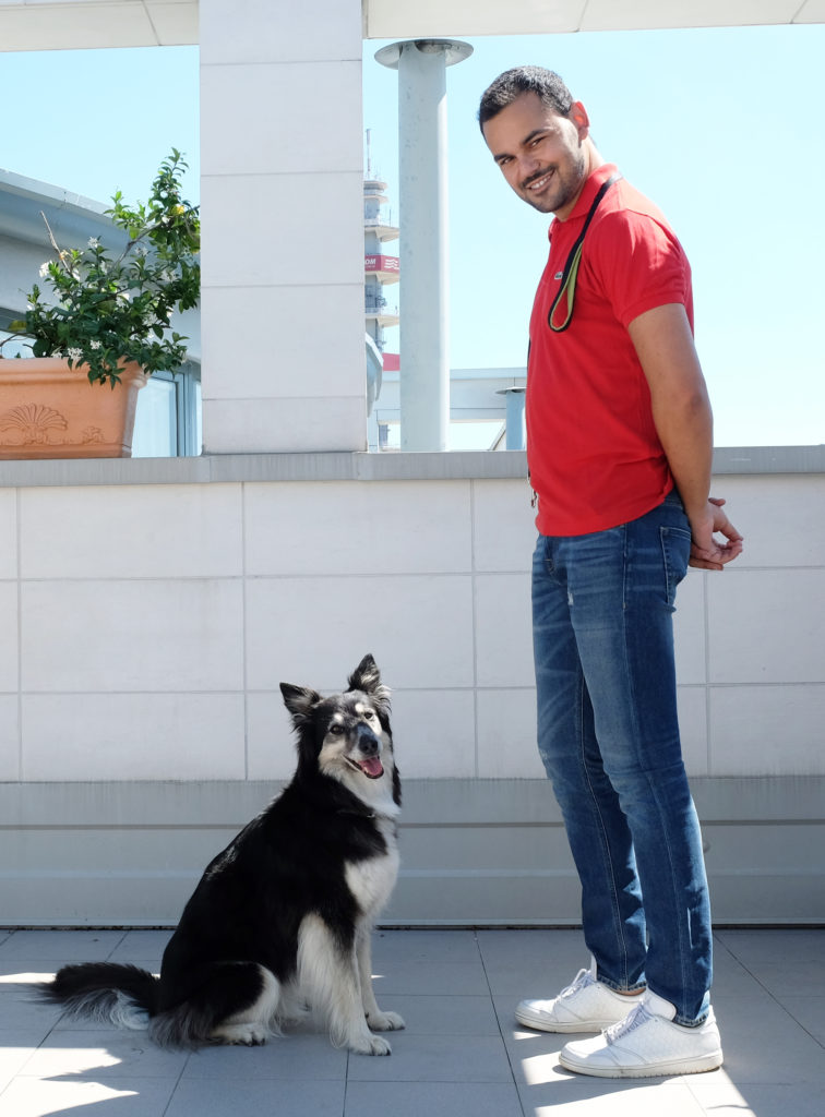 mirko addestratore di cani